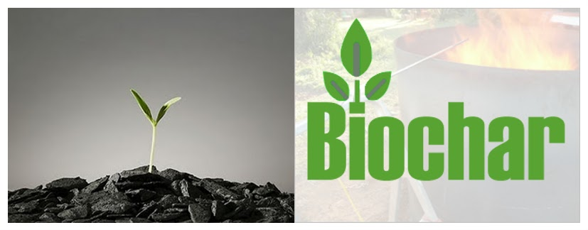 Biochar as a soil amendment and carbon sequestering tool (1/6)