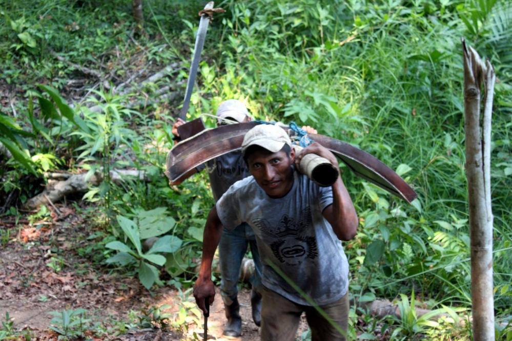 Vuthisa Biochar Trials Guatemala - Part 1 (6/6)